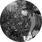 Appletreeman's Nursery